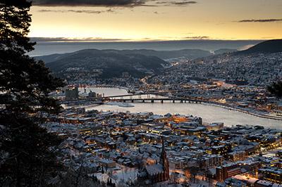 Billig ved i Drammen